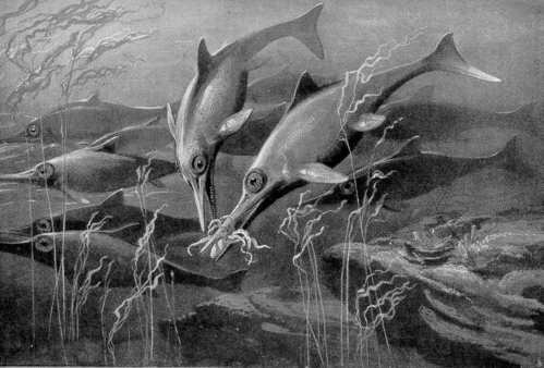 Uitgestorven_diersoorten_ichthyosau