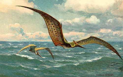 Uitgestorven_diersoorten_pteranodon